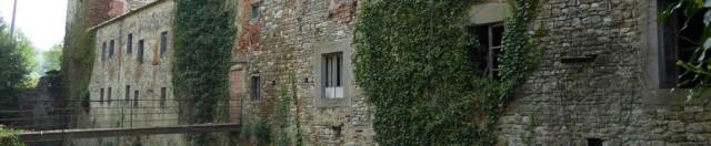 Sono davvero salve le Gualchiere trecentesche di Firenze in riva d'Arno?