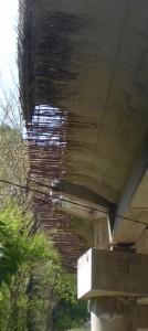 viadotto-falciani-dettagli-3