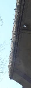 viadotto-falciani-dettagli-5