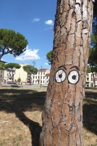 piazza-tronchi-ceppi-e-messaggi-11