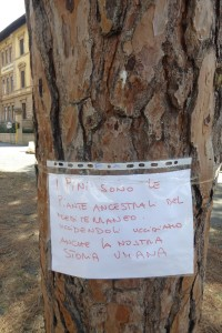 piazza-tronchi-ceppi-e-messaggi-7