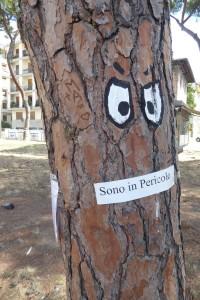 piazza-tronchi-ceppi-e-messaggi-8
